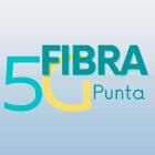 Fibra 5G Punta